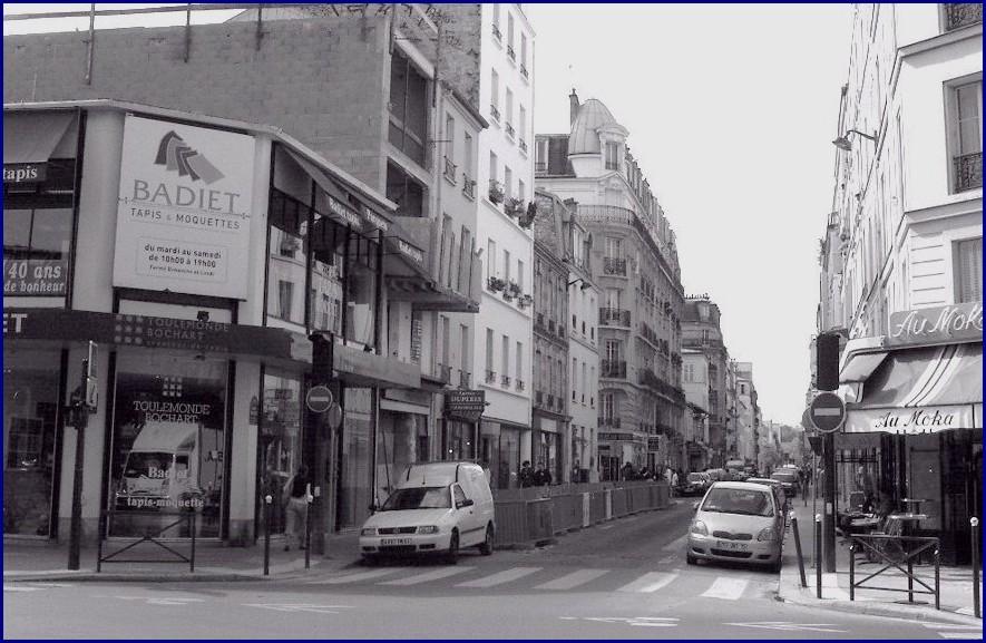 ruevioletsept2008.jpg