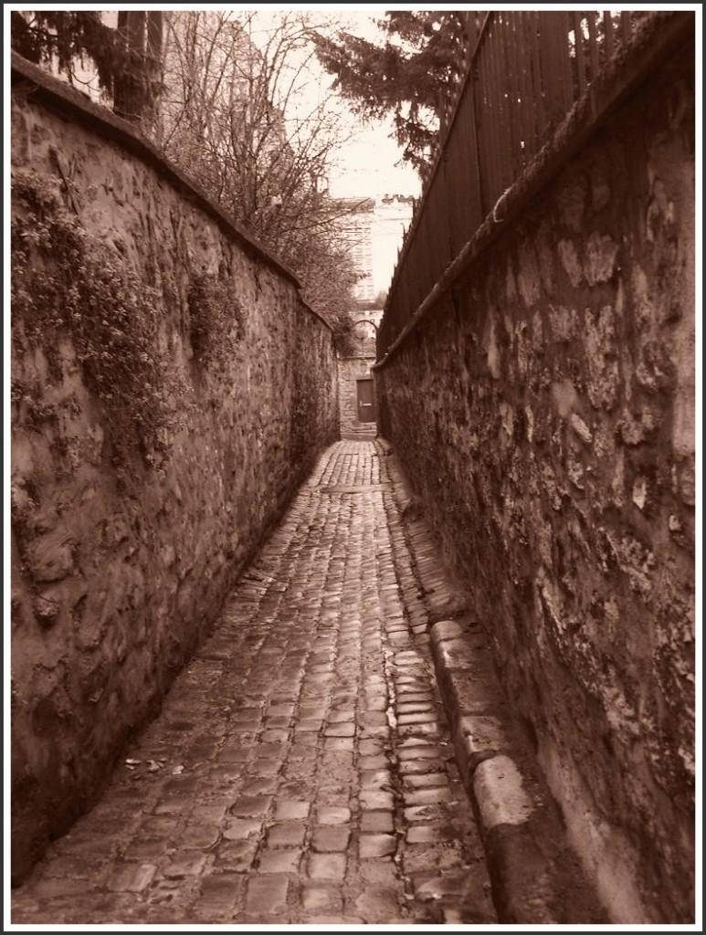 La demeure parisienne d'un grand écrivain (4 et fin). snb19797